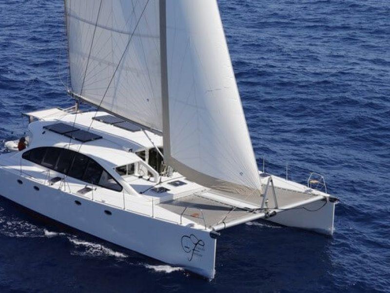 3149 - 1621346600-used-catamaran-for-sale-dh-550-multihull-network-fr-01